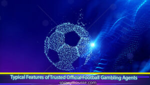 Typical-Features-of-Trusted-Official-Football-Gambling-Agents